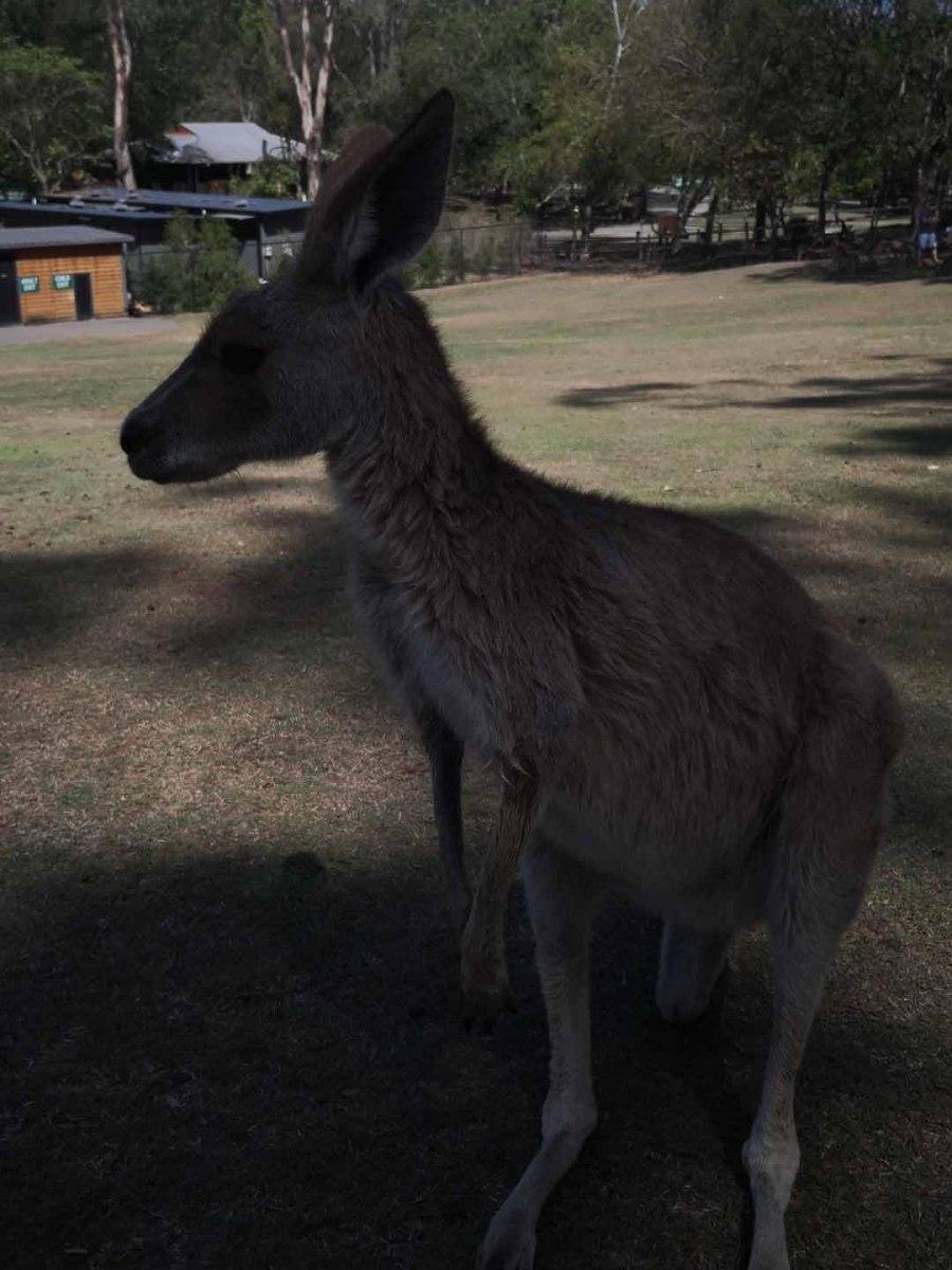 Brisbane_Slideshow_010