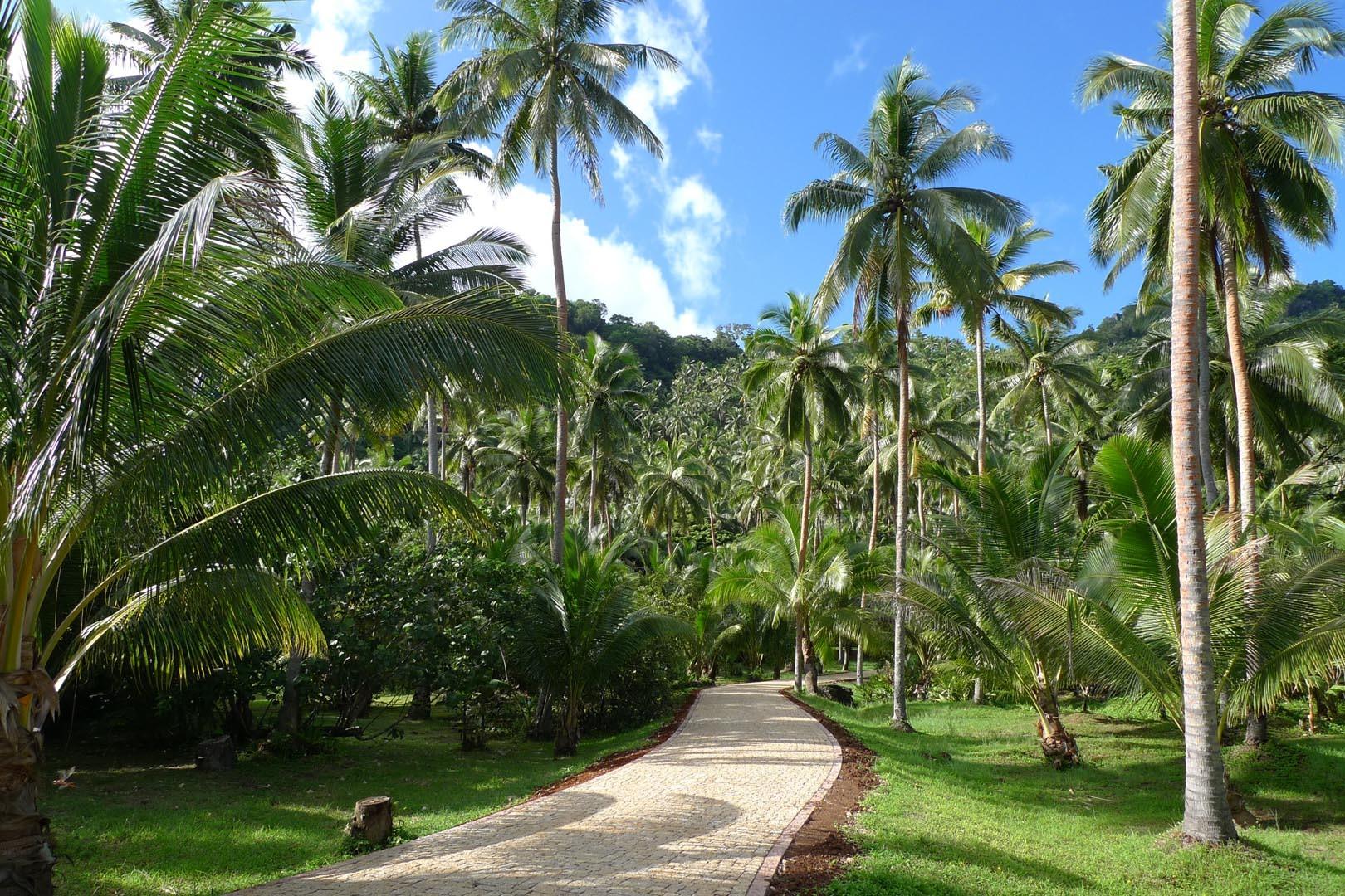 Fiji_Laucala_Private-Island_001