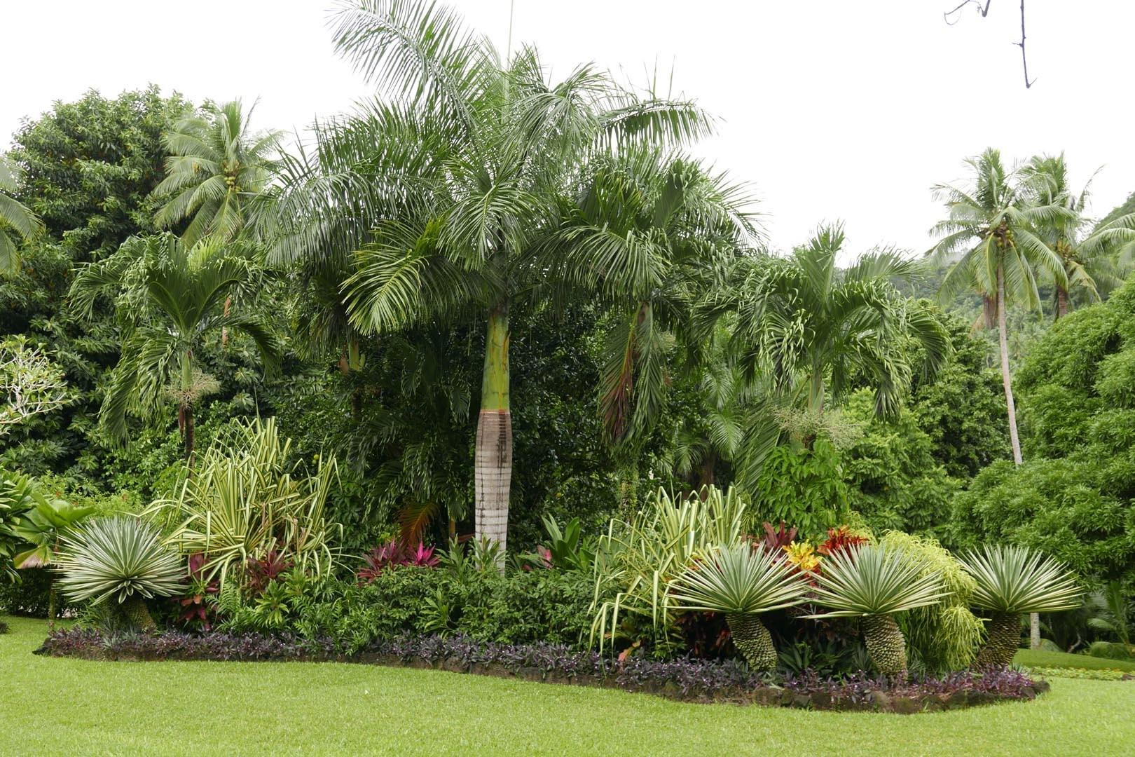 Fiji_Laucala_Private-Island_005