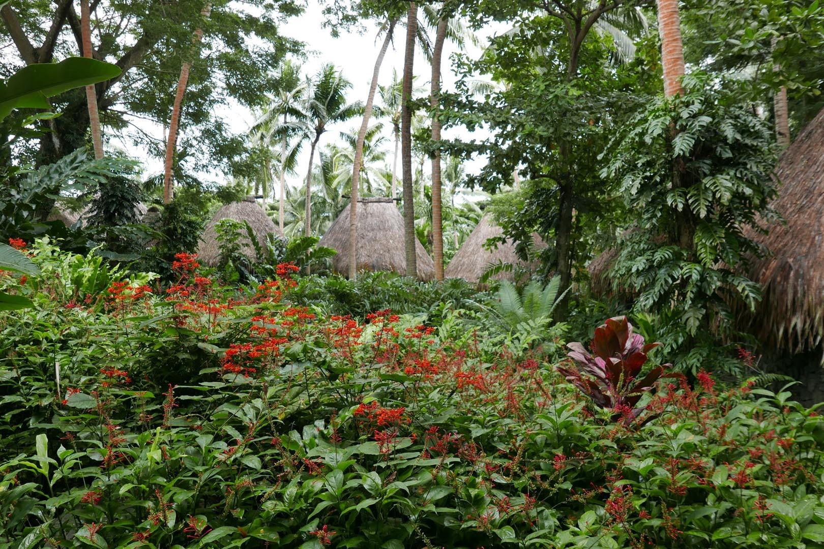 Fiji_Laucala_Private-Island_006
