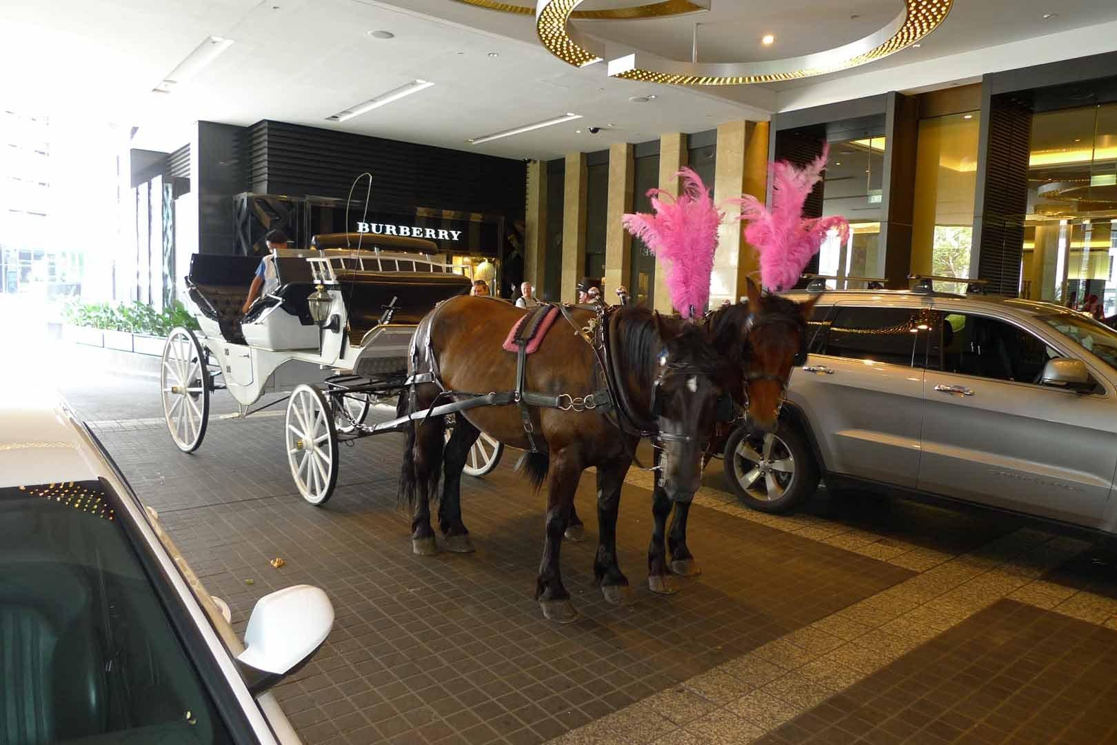 Melbourne_Hotels_Slideshow_015