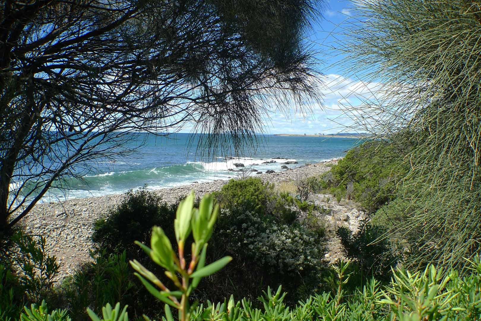 Sydney-Tasmania_Hotel_Saffire-Freycinet_039